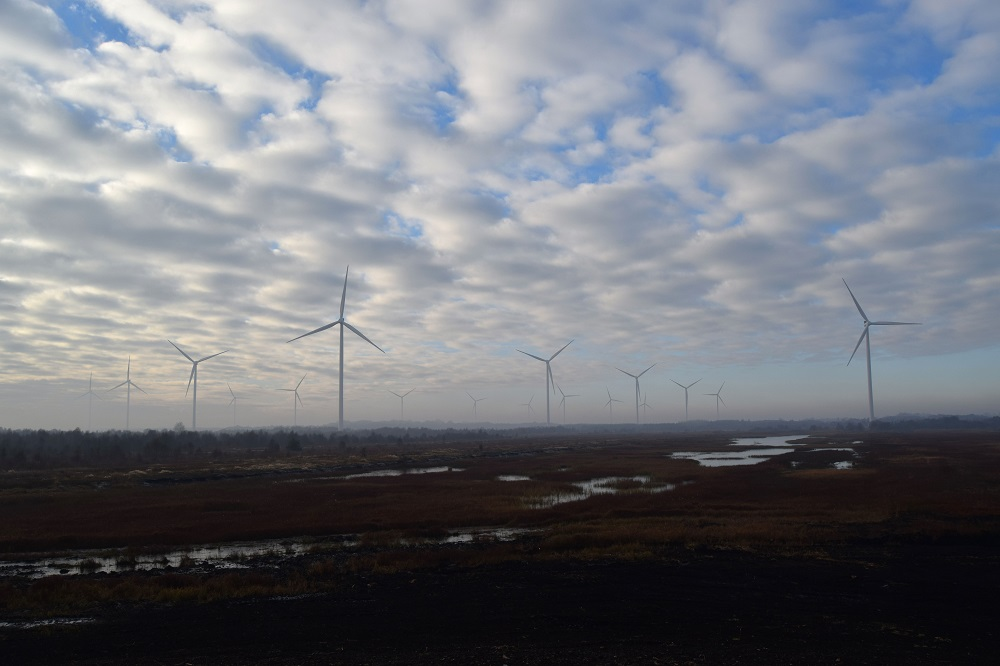 The Wind Farm section